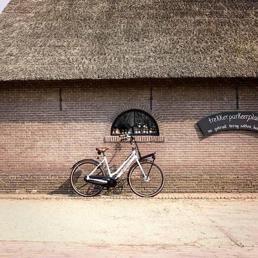 Das Lastenrad für Damen ist robust und elegant. Schmücken Sie Ihr Lastenrad von Gazelle mit einem blumenverzierten Korb oder einer Kiste auf dem Frontgepäckträger.
